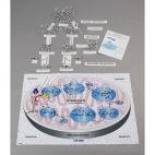 Molecules Of Metabolism Kit. Digestion & Respiration.