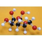 Glucose Molecule Model