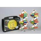 DNA Molecule Set