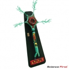 Motor Neuron Model