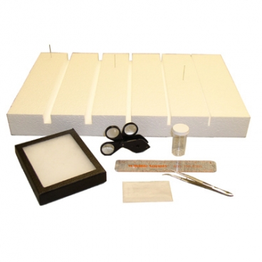 Insect Lab Kit