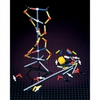 Dna Model Kit (12 Kits)