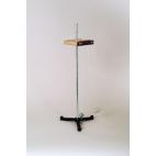 Adjustable Pendulum