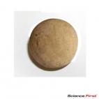 Cork Ball, 19mm.