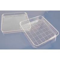 Petri Dish, Square Grids - Package of 10