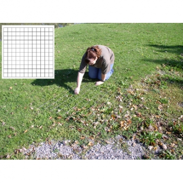 "Survey Grid 2""Mshx2'X2' *Over*.  Stream Embededness Grid Small."