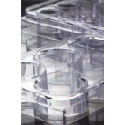 Microtiter Multiple-Well Plate, 24 Wells, Sterile, Flat Bottom